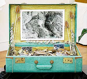 Donna's photographic suitcase